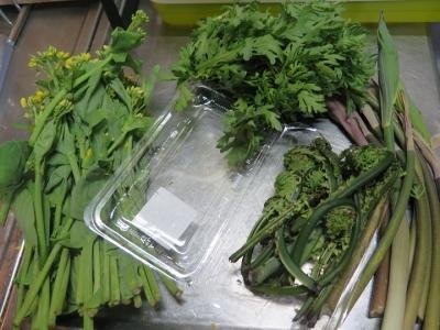 菜花、コゴミ、春菊、アマドコロ