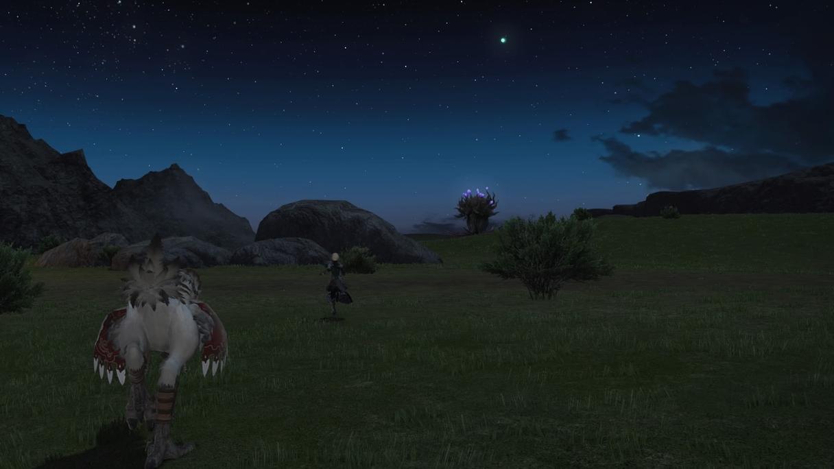 草原を走って
