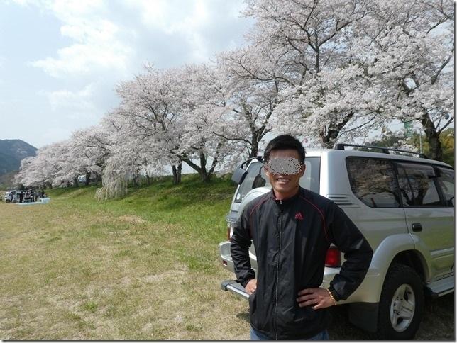 20180401-桜散歩02