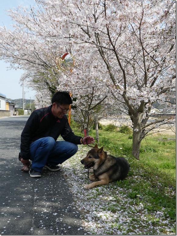 20180401-桜散歩31