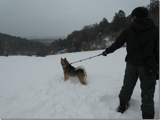 20180128雪遊び02-34