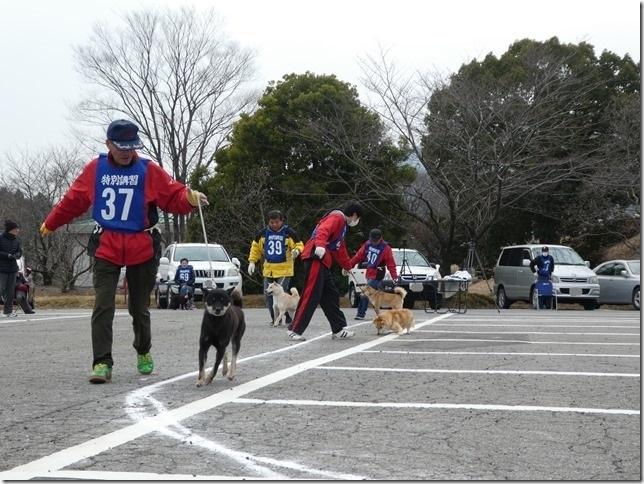 20180225三重単独展04-02