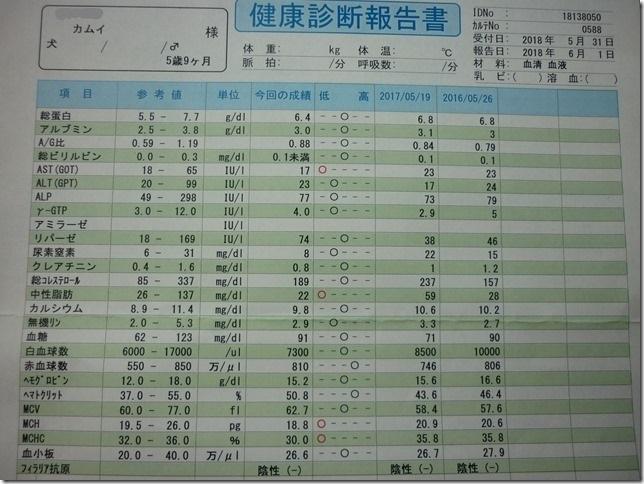 201806血液検査結果-01