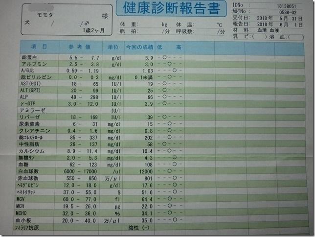 201806血液検査結果-03