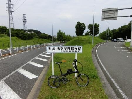 MG4673.jpg