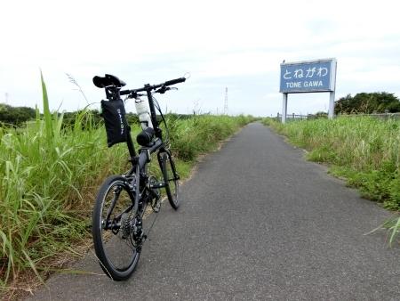 MG5142.jpg
