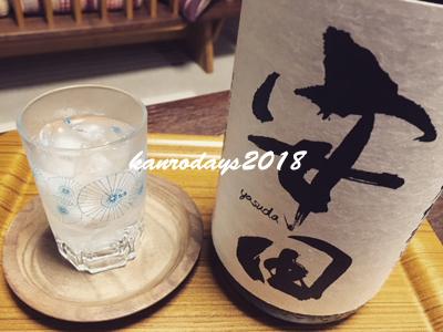 20180423_安田