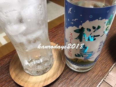 20180529_青天桜島スパ