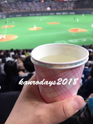 20180612_佐藤の白湯割り