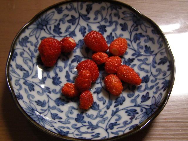 イチゴ0616