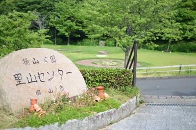 satoyama.jpg