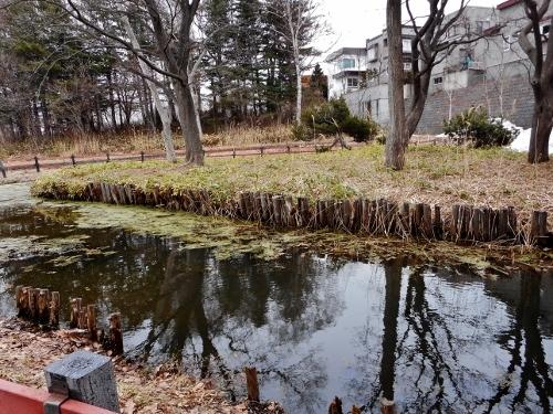 八紘学園 花菖蒲園近くの池