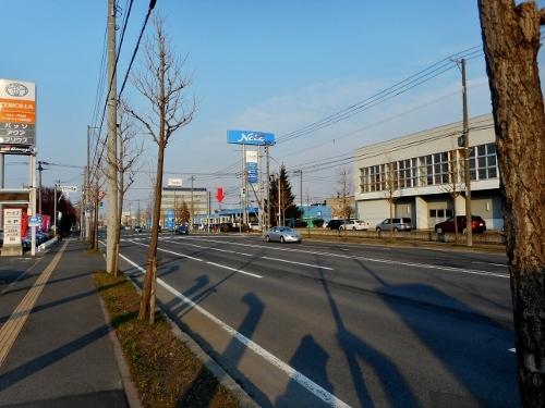 厚別通小学校から眺める百年記念塔