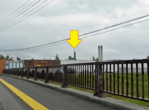 小野幌橋から百年記念塔を望む