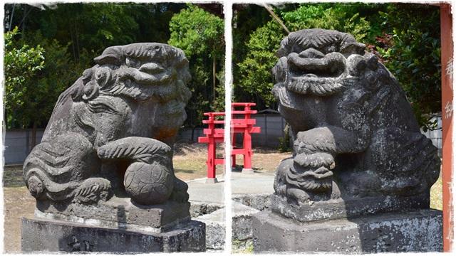 金井神社・狛犬