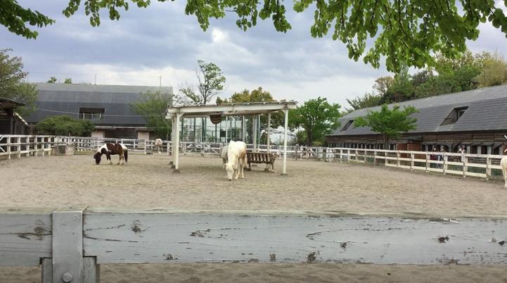 こども自然動物公園1