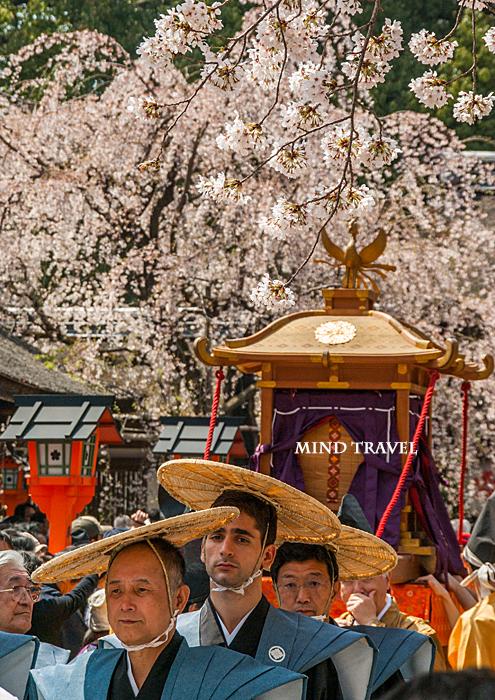 平野神社 桜祭神幸祭 神輿