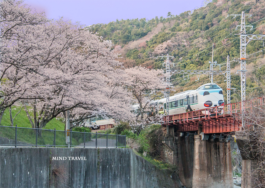 山中渓駅付近  パンダ列車