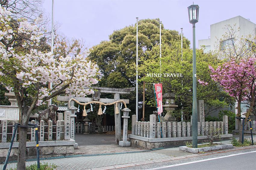 友呂岐神社 八重桜