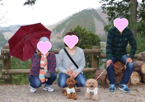 IMG_235020180401山桜の並木道6