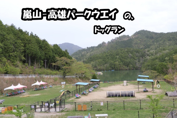 IMG_266620180417嵐山ドライブパークウェイのラン風景