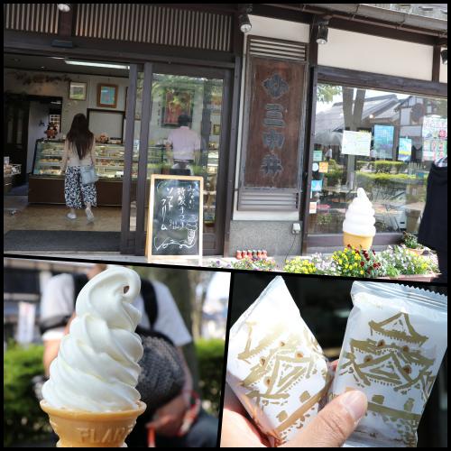 collage20180429三中井さん