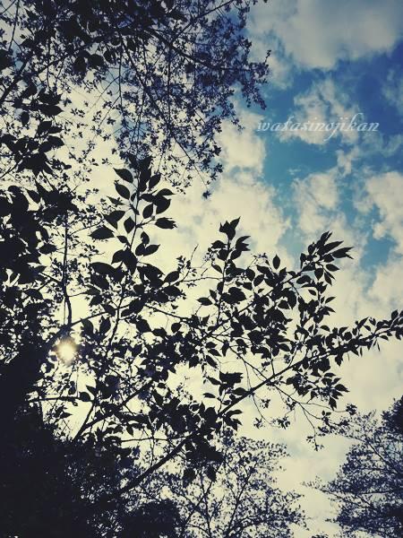 photo20191001.jpg