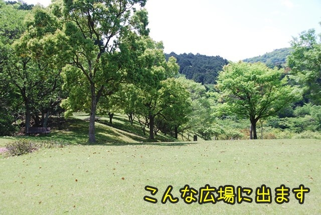 a-DSC_5928.jpg