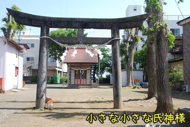 a-DSC_5962.jpg