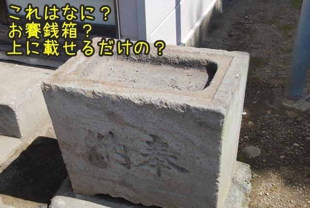 a-DSC_5973.jpg