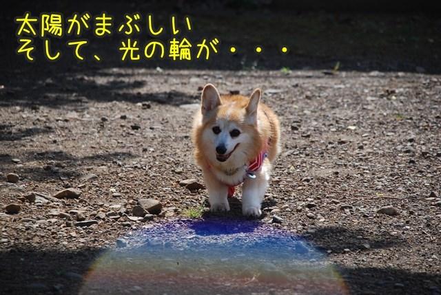 a-DSC_5978.jpg