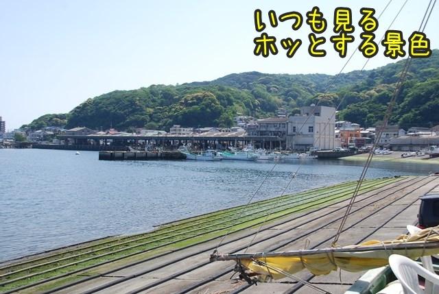 a-DSC_5981.jpg