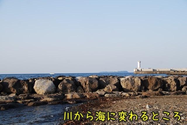 a-DSC_6077.jpg
