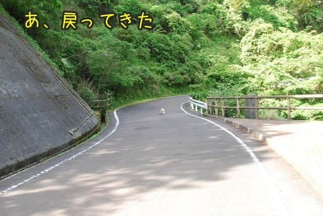 a-DSC_6377.jpg