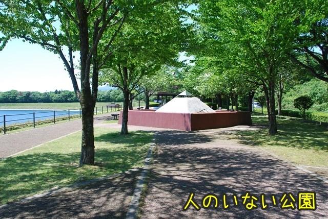 a-DSC_6602.jpg