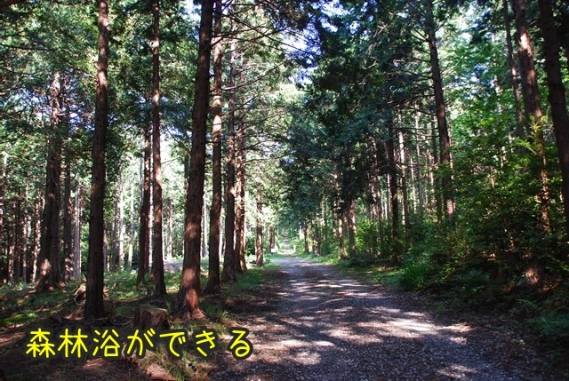 a-DSC_6760.jpg