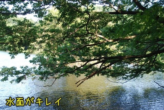 a-DSC_6817.jpg