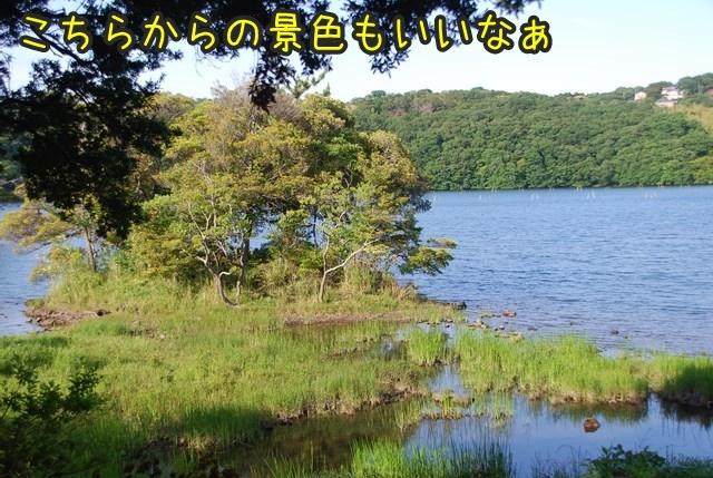 a-DSC_6821x.jpg