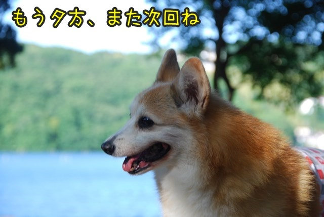 a-DSC_6828x.jpg