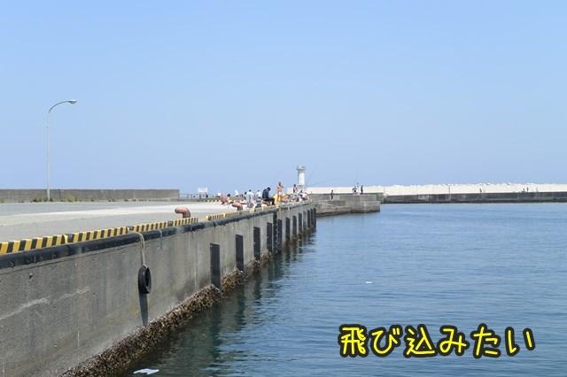 a-DSC_9035x.jpg