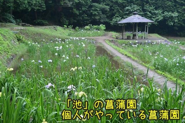 a-DSC_9201.jpg