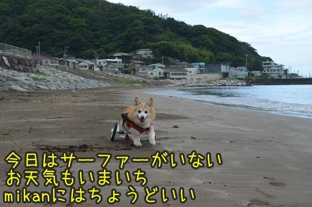 a-DSC_9478.jpg