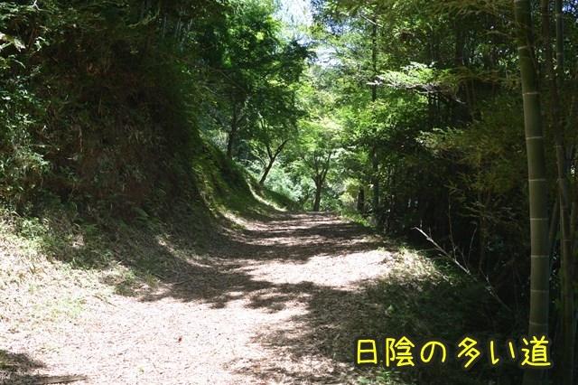 a-DSC_9520.jpg