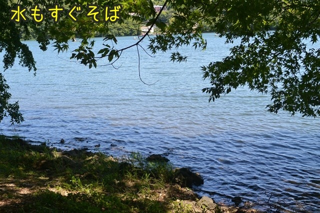 a-DSC_9530.jpg