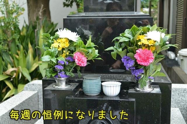 s-DSC_8888.jpg