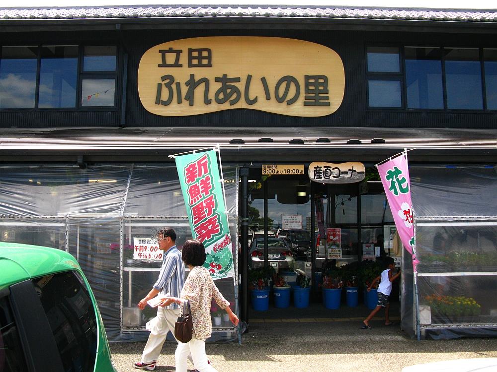 2017_08_13愛西市:立田ふれあいの里006