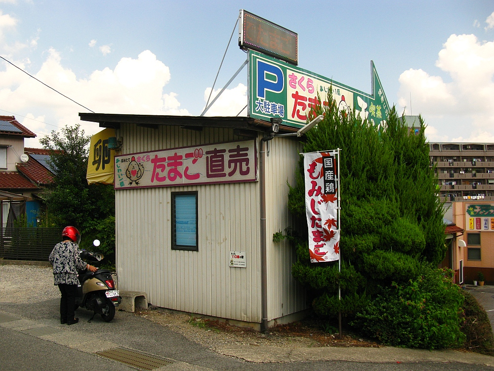 2017_09_10豊明:野村たまご(喫茶チャンス)37