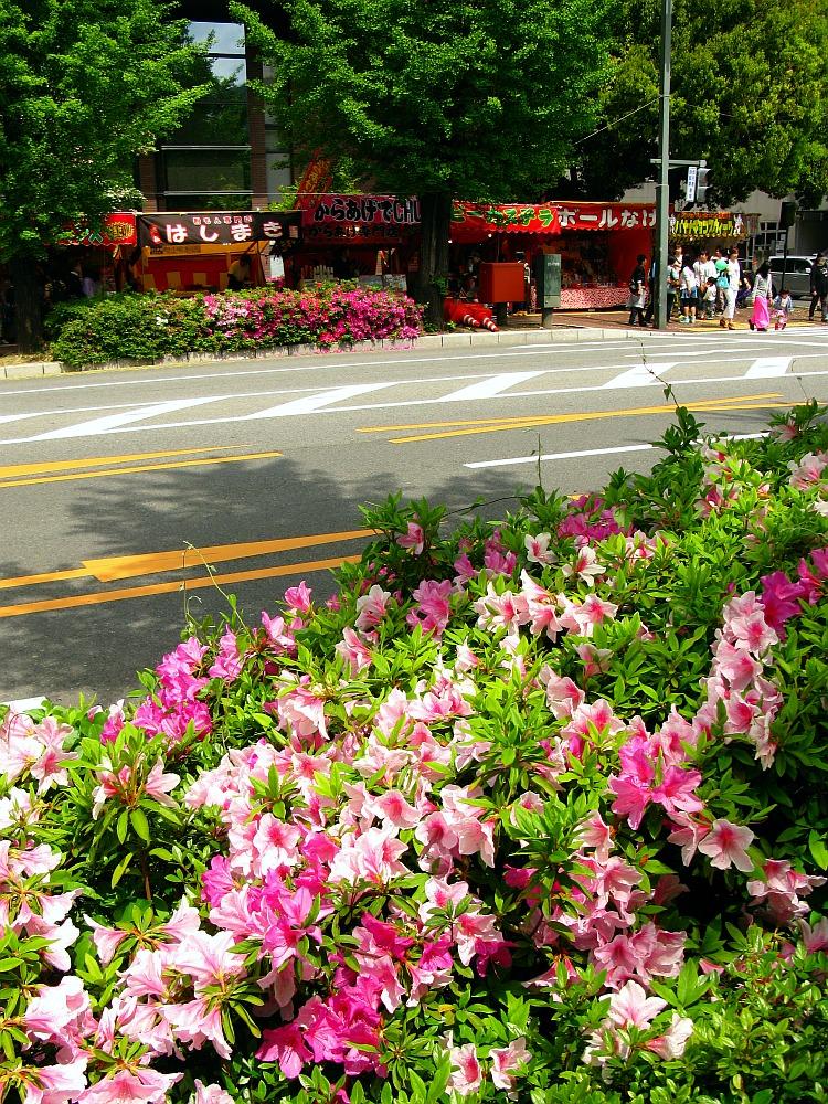 2014_04_29 B 呉:港まつり39