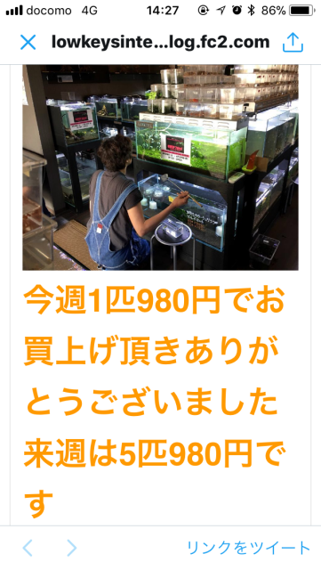 IMG_と3251.png
