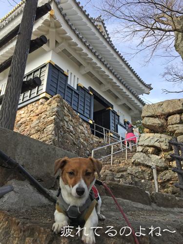 2018-03-10-養老登山-073
